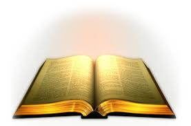 read_Bible
