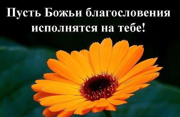 Blagosloveniya ispolnyatsya na tebe