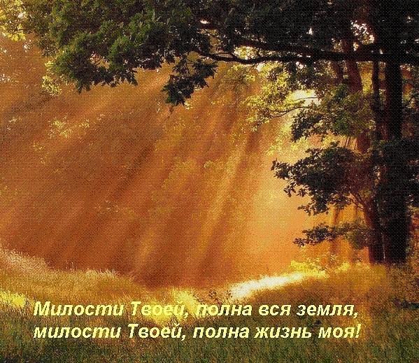 Milosti Tvoey, polna vsya zemlya
