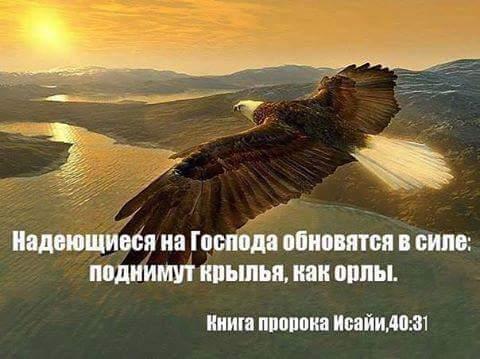 Nadeyushchiesya na Gospoda obnovyatsya v sile