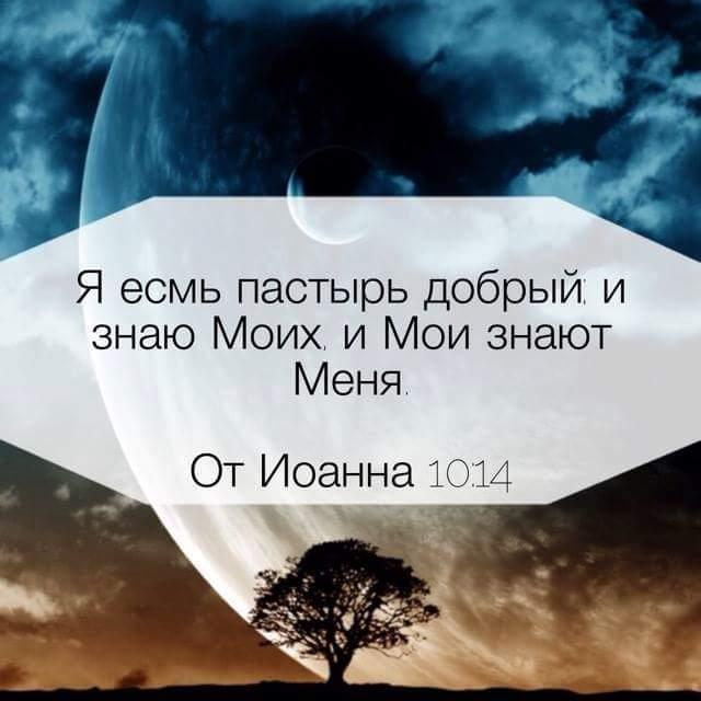 Ya esm' pastyr' dobryy i znayu Moikh