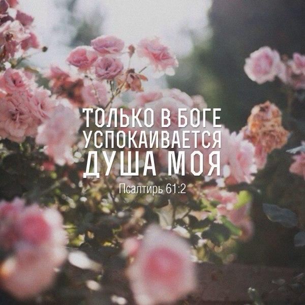 Только в Боге