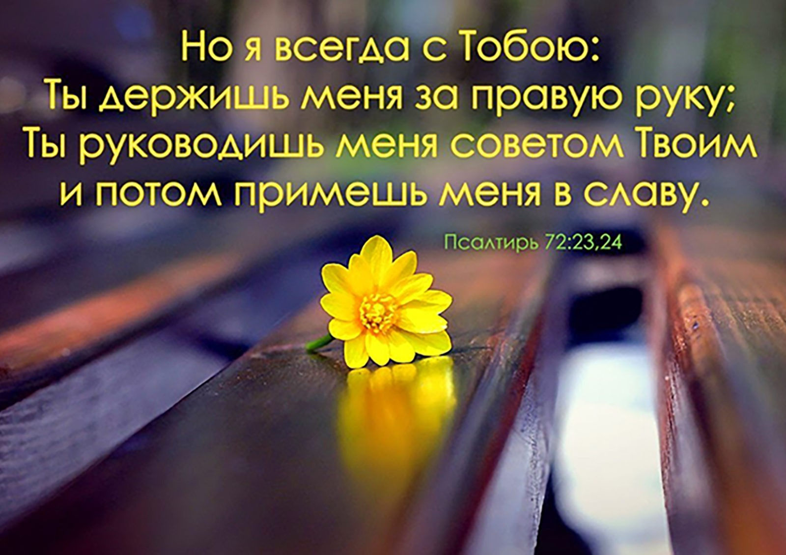 Псалом 72