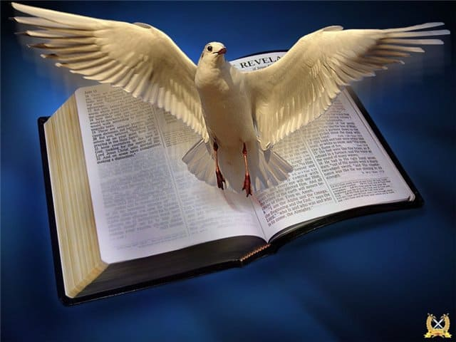 slovo boga
