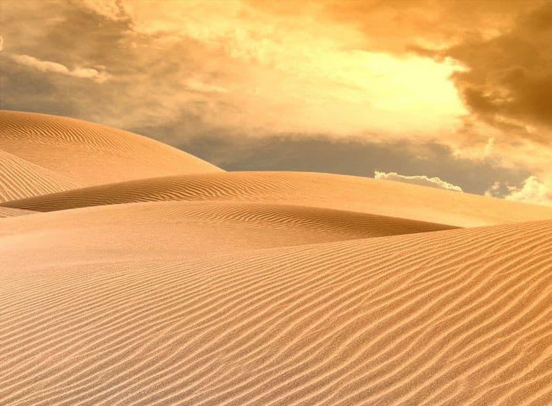 sovershil posadku v pustyni