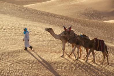 v pustyni beduin