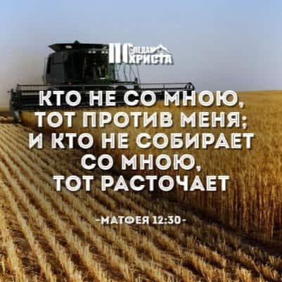 esli-ya-zhivu-tolko-dlya-sebya