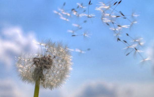 10 Мая — Ежедневные размышления