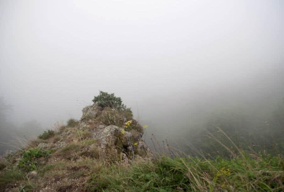 tuman v gorakh