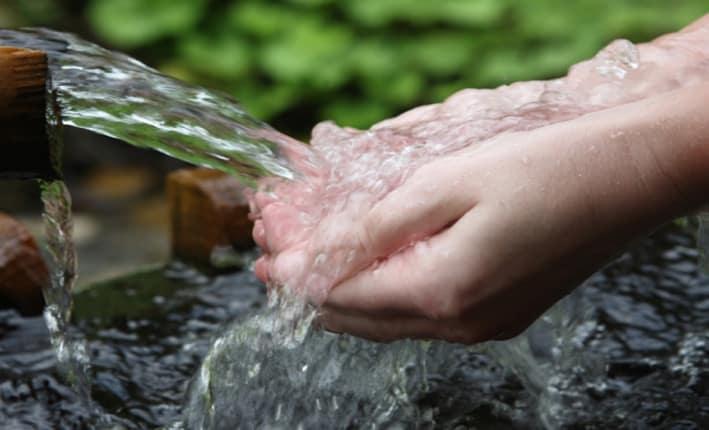 istochnik vody zhivoy