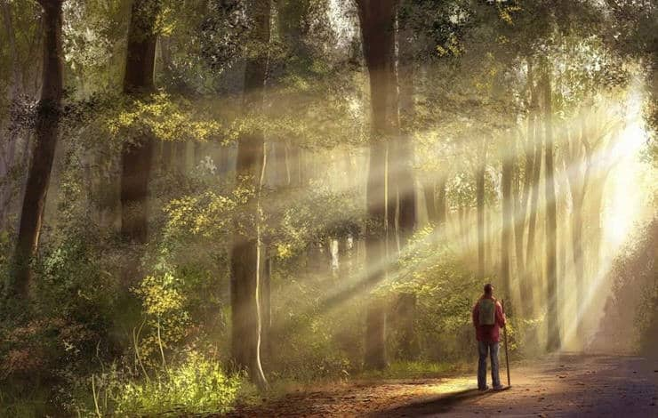putnik v lesu