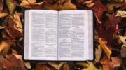 Во всем повиноваться Богу