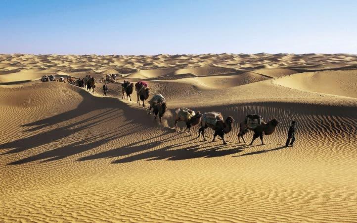 karavan v pustyne